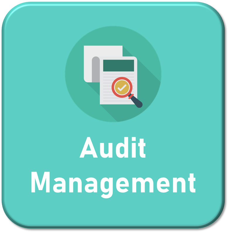 Audit_Management