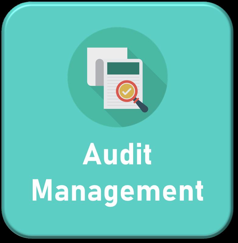 Audit_Management