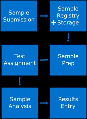Sample Analysis - Labwise XD